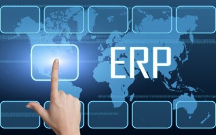 Importance of IT Support in Los Angeles in Securing Effective ERP Software