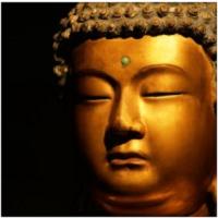 Walking with Buddha: The Dhammapada