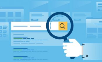 SEO: Which Type is Right for You?