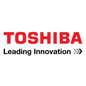 Toshiba Security