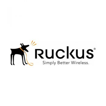 Ruckus Wireless