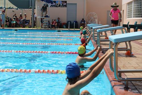PC swim carnival 250