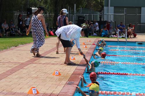 PC swim carnival 274