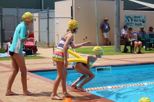 PC swim carnival 313