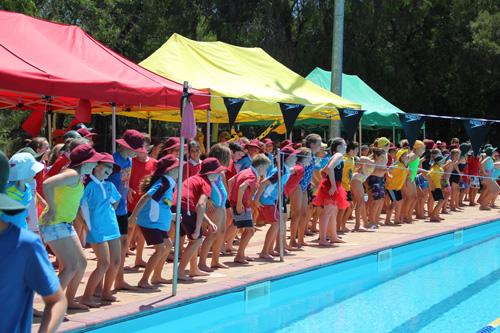 PC swim carnival 348