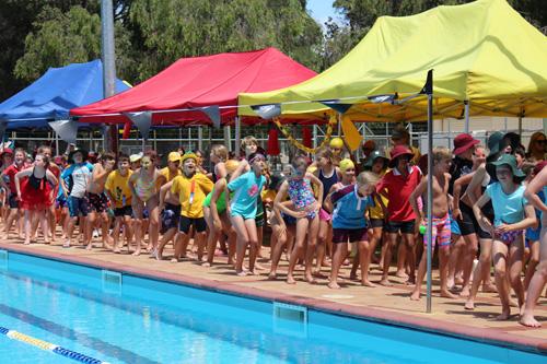 PC swim carnival 366