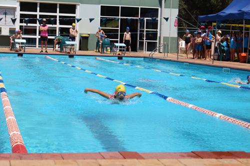 PC swim carnival 376