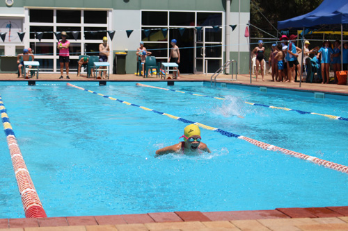 PC swim carnival 378