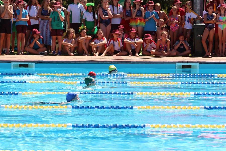 Yr 5-8 Swimming Carnival - 45