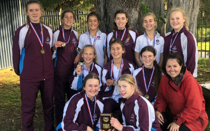 High Schools Netball Cup: boys and Year 8 girls excel