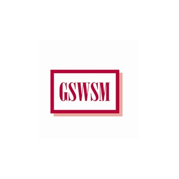 Geriatric Social Workers of SE Michigan