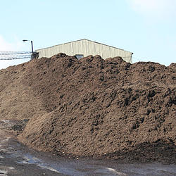 Wood Waste Recycler, Maryland - Mulch