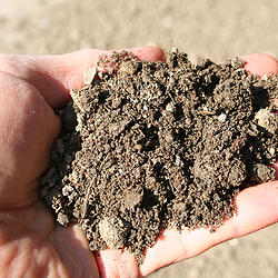High-quality Topsoil and Organic Soil Conditioners, Baltimore - Topsoil
