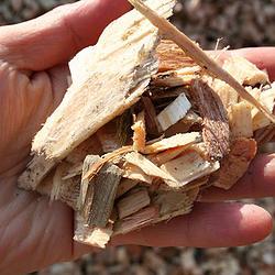 Sawdust & Woodchips, Milford Mill, Baltimore, Dundalk