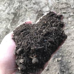 High-quality MD State Certified topsoil and Organic Soil Conditioners, Baltimore - MD State Certified topsoil