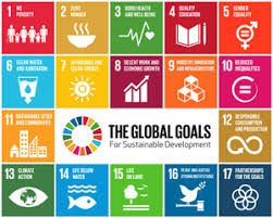 Can Renewable Energy Deliver on the UN Sustainable Development Goals?