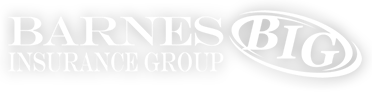 Barnes Insurance Group