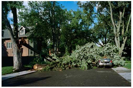 Home Insurance Danbury