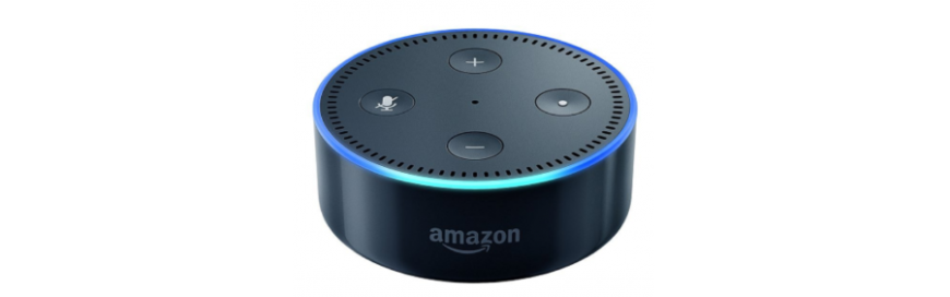 Shiny New Gadget of the Month Alexa, Who's Winning the Virtual Assistant War?