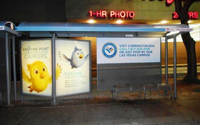 carrington-transit-shelter-1pt