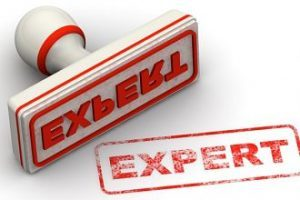 Experts appreciate working with other experts