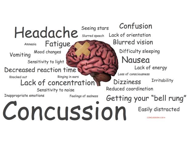 Image result for concussion program