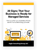 EagleConsulting_20-Signs_eBook_HomepageSegment_Cover