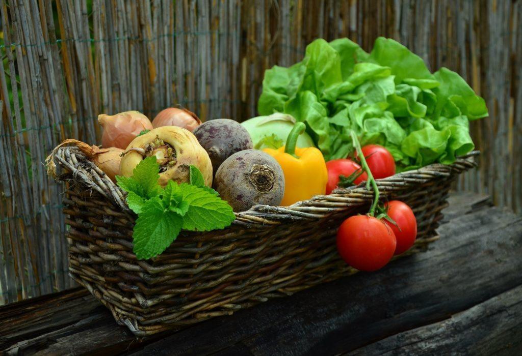 Vegetablesfor-everyone-makestheworldmorecolorful-1024x700