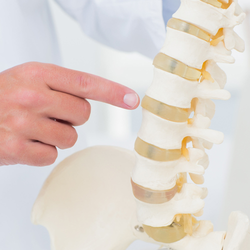 KnowYourBack | Canada East Spine Centre