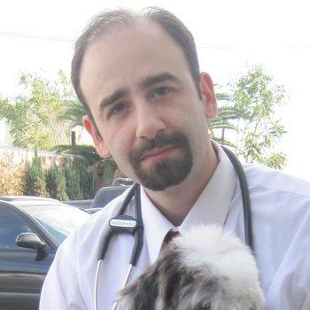 Dr Stan Avezov