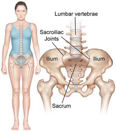 Sacroiliac Joint Syndrome Redlands Loma Linda Highland Bones